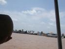 メコン川と椰子の実